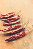 Chili Pepper vermelho Imagem de Stock Royalty Free