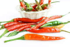 Chili pepper on a white background.  Royalty Free Stock Images