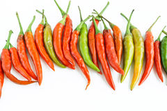 Chili pepper on a white background.  Royalty Free Stock Image