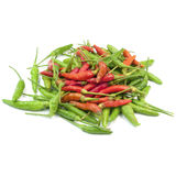 Chili Pepper On White Background d'un rouge ardent Photos stock