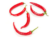 Chili pepper  on a white background Stock Photography