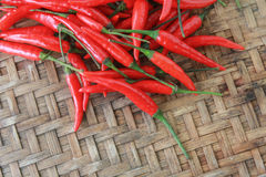 Chili Peppers épicé rouge sur le fond de vannerie Photos stock