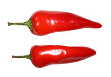 Chili Peppers royalty free stock photography