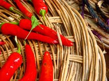 Chili Peppers royalty-vrije stock foto