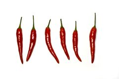 Chili peppers. On a white background Stock Photos