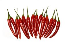 Chili peppers. On a white background Royalty Free Stock Image