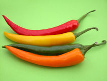 Chili peppers. Hot colors Stock Photography
