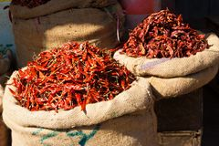 Chili peppers. Market stall in India with chili peppers Royalty Free Stock Photo