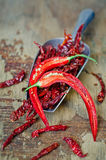 Chili Peppers. Dried Red Chili Peppers  Dried Red Chili Peppers Royalty Free Stock Images