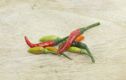 Chili Peppers Immagine Stock