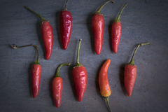 Chili Peppers image stock
