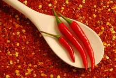 Chili peppers. Three red hot chili peppers on a wooden spoon on chili seeds background royalty free stock photography