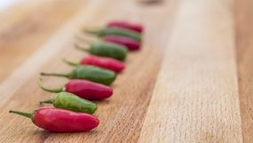 Chili Peppers All in a Row Stock Photo