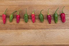 Chili Peppers All in a Row Stock Photography