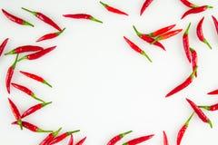 Chili Peppers Background tailandese Fotografie Stock Libere da Diritti