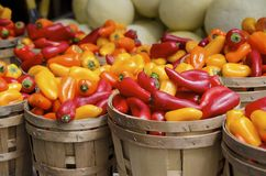 Chili Peppers. Baskets of fresh red and orange hot chili peppers for sale the outdoor market Royalty Free Stock Photography