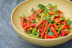 Chili peppers in a bowl Royalty Free Stock Images