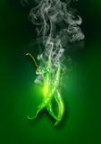 Chili Peppers caldo eccellente verde d'ardore Fotografia Stock Libera da Diritti