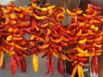 Chili Peppers or Capsicum For Sale In Loule Portugal. Red and yellow chill peppers for sale in market in Loule Portugal Royalty Free Stock Images