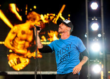 Chili Peppers d'un rouge ardent images libres de droits
