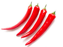 Chili Peppers in different sizes Stock Photo