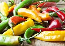 Chili Peppers färgrika kryddiga peppar Arkivbilder