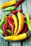 Chili Peppers färgrika kryddiga peppar Arkivbild