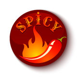 Chili peppers in fire. Vector illustration of a hot jalapeno or chili peppers in fire. Spicy food Royalty Free Stock Images