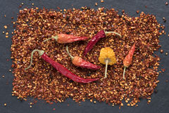 Chili Peppers And Flakes royaltyfria foton