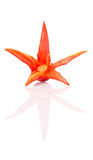 Chili Peppers Flower rouge découpé II Photos stock