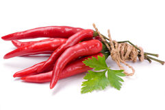 Chili peppers and fresh, green leaf of parsley Stock Photography