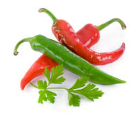 Chili peppers fresh, green leaf of parsley. Royalty Free Stock Photo