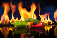 Chili peppers in front of fire Royalty Free Stock Photo