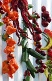Chili peppers fruits drying Stock Photos