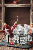 Chili peppers and glasses of vodka Stock Photos