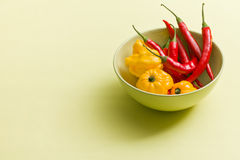 Chili peppers and habanero in bowl Royalty Free Stock Image
