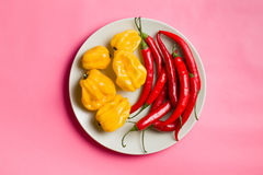 Chili peppers and habanero on plate Stock Photography