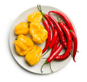 Chili peppers and habanero on plate Stock Photo