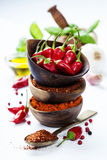 Chili peppers with herbs and spices Royalty Free Stock Images