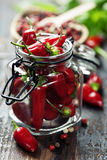 Chili peppers with herbs and spices Stock Images