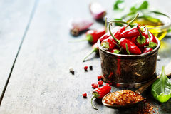 Chili peppers with herbs and spices Royalty Free Stock Photography