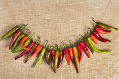 Chili peppers on a row on burlap texture Royalty Free Stock Photography