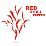 Chili Peppers isolated on white Background. Vector Royalty Free Stock Image