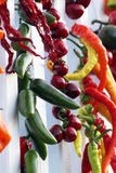 Chili peppers jalapeno fruits drying Royalty Free Stock Image
