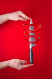 Chili peppers on knife Stock Images