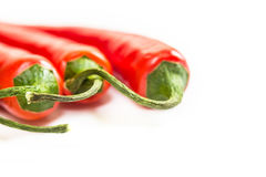Chili peppers on light background, macro shot Stock Photography