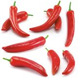 Chili peppers peperoni. Multiple --- some peppers on white background Stock Image