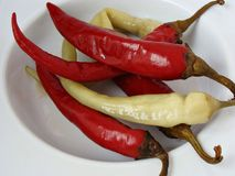 Chili peppers pickled in vinegar. Romanian chili pepper pickled in a vinegar brine Stock Photo
