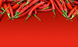 Chili peppers on red background Royalty Free Stock Photo
