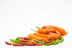 Chili peppers. Red hot chili peppers in isolated background Royalty Free Stock Photos